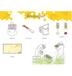 infographics of beekeeping reaction of bees to vector image