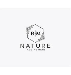 Initial bm letters botanical feminine logo vector