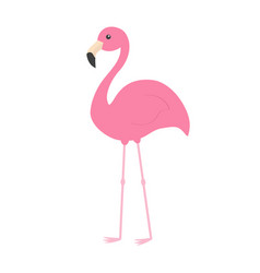 pink flamingo with wing exotic tropical bird zoo vector image