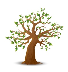 Realistic tree with green leaves on white vector
