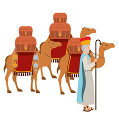 Wise man with camels manger character vector