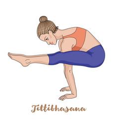 women silhouette firefly yoga pose tittibhasana vector image
