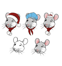 portraits rats in winter clothes vector image