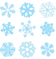 snowflake winter set illustration vector image vector image