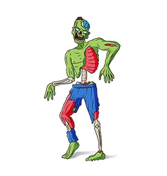 Zombie man colorful vector image