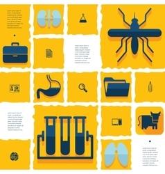 veterinary flat infographic vector image