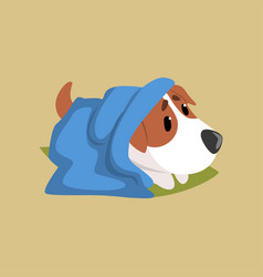 jack russell puppy character lying on the floor vector image