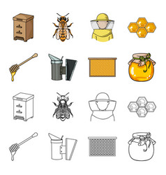 A frame with honeycombs a ladle honey a vector