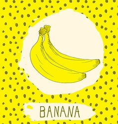 Banana hand drawn sketched fruit with leaf on vector