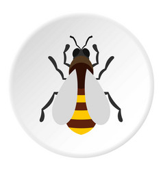 Bee icon circle vector