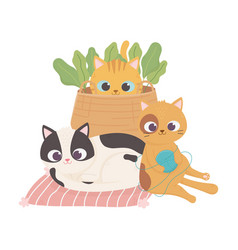 cats make me happy cute cats with basket wool vector image