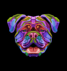colorful british bulldog on pop art style vector image