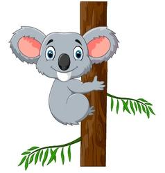 Cute koala holding tree vector