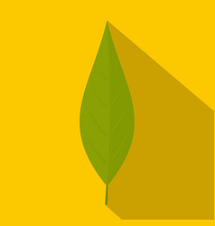 green leaf of willow icon flat style vector image