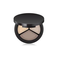 Makeup shadow bronzer corrector in black case vector