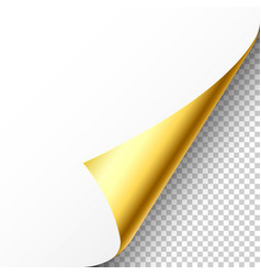 Realistic golden curled page corner with shadow on vector