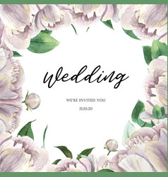 White peony blooming flower botanical watercolor vector
