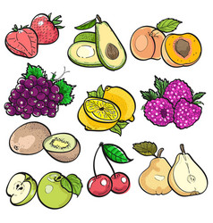 Set collection color doodle of fruit vector