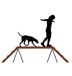 Woman and dog on dogwalk vector image vector image