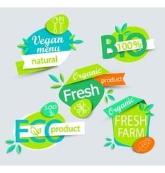 Set of healthy organic food labels vector image vector image