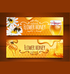 Realistic honey banners vector