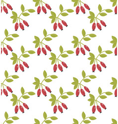 rosehip seamless pattern hawthorn endless vector image
