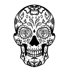 Sugar skull isolated on white background day of vector