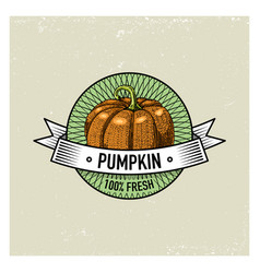 Pumpkin vintage set of labels emblems or logo for vector