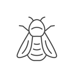 Bumblebee line outline icon or insect concept vector