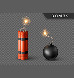 dynamite bomb with burning wick and black sphere vector image