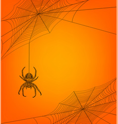 Helloween background with spider vector
