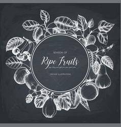 Vintage fruits card design on chalkboard vector