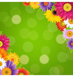 Colorful Gerbers Flowers Border With Green Bokeh vector image