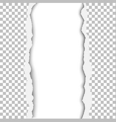 a ragged vertical lane in transparent vector image