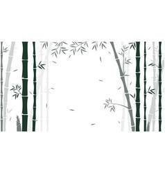 bamboo forest background for wallpaper vector image