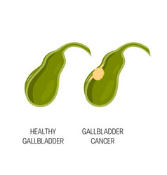 Healthy and cancer gallbladder concept vector