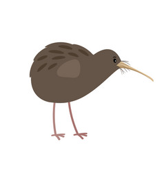Kiwi cute cartoon bird icon vector