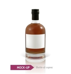 bottles of cognac vector image vector image