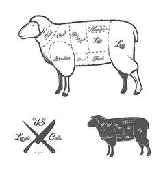 American cuts of lamb or mutton diagram vector image vector image