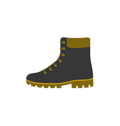 black and brown boot shoes vector image