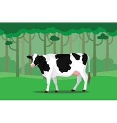 Cow cattle single isolated white with green grass vector