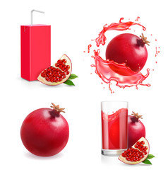 pomegranate juice isolated icons glass pack set vector image