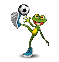 frog with a soccer ball vector image