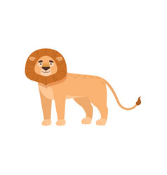 Benignant lion stands sideways isolated on white vector