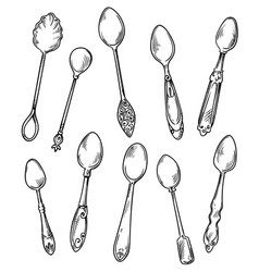 set spoons hand drawn vector image