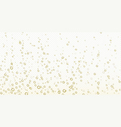 Soda bubbles champagne water or oxygen air fizz vector