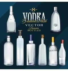 Various Types Of Vodka Bottles vector