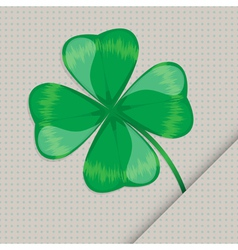 clover leaf on the paper vector image vector image