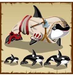 Set of killer whales and the armed orca vector image