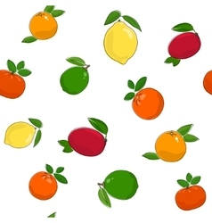 Seamless Pattern of Citrus Fruits vector image